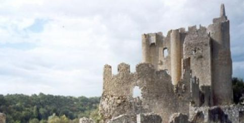 Forteresse Angles sur l'Anglin